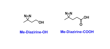Diazirine Derivatives(双吖丙啶衍生物)